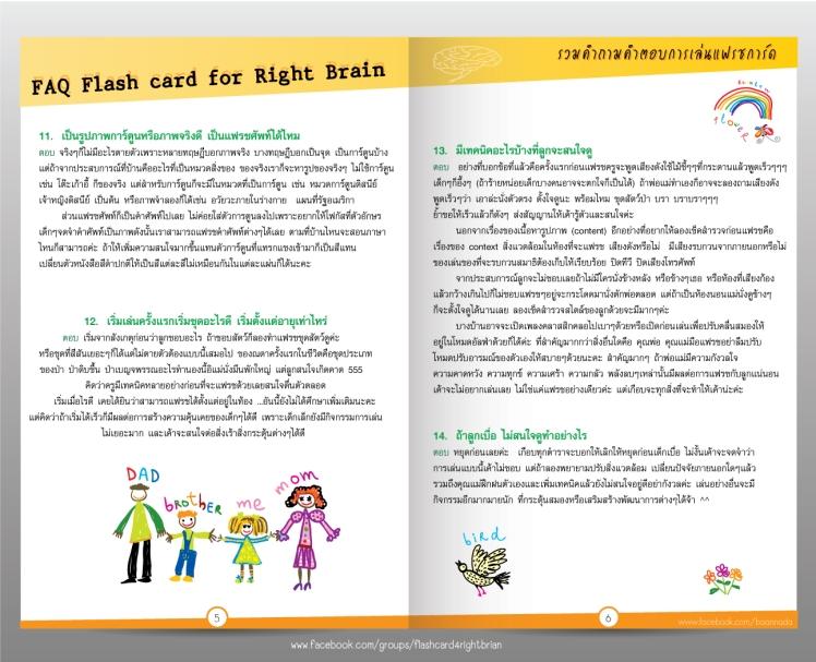 flash-booklet3